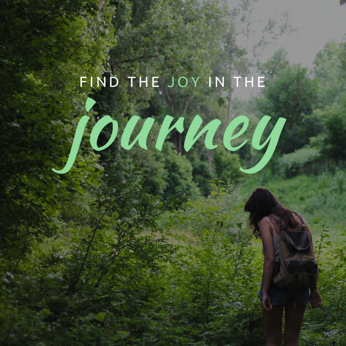 Finding The Joy in the Journey (being mindful)